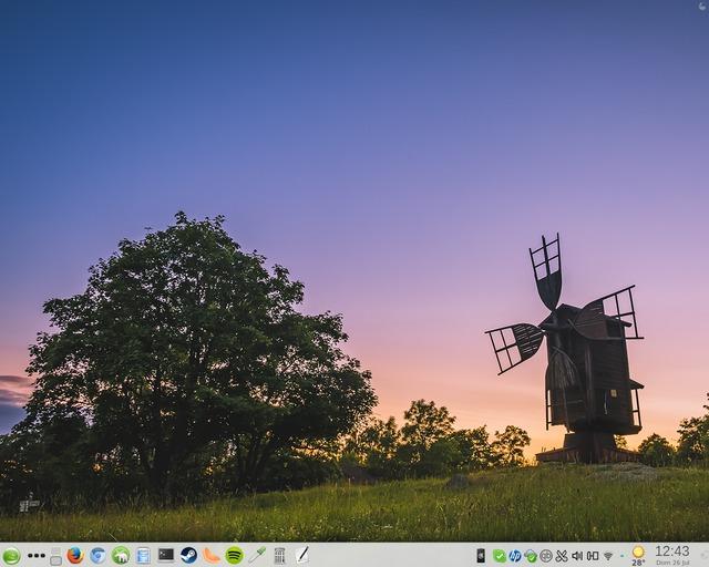 Usar Steam en GNU/Linux: ¿luchar contra molinos de viento? Ya no...